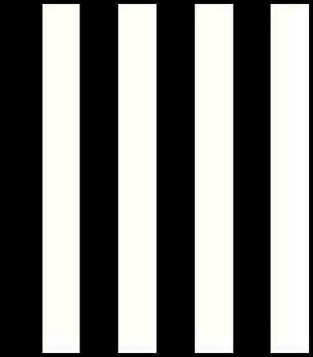 Papier peint sejour et chambre vinyle rayure large noir - Papier peint noir et blanc rayures ...